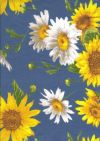 BLAU55 Tournesols bleu allover